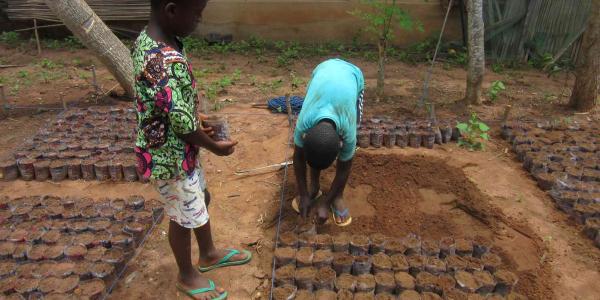 children_planting_trees
